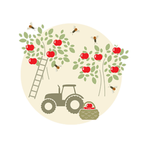 Bestäubung Obstbäume Illustration